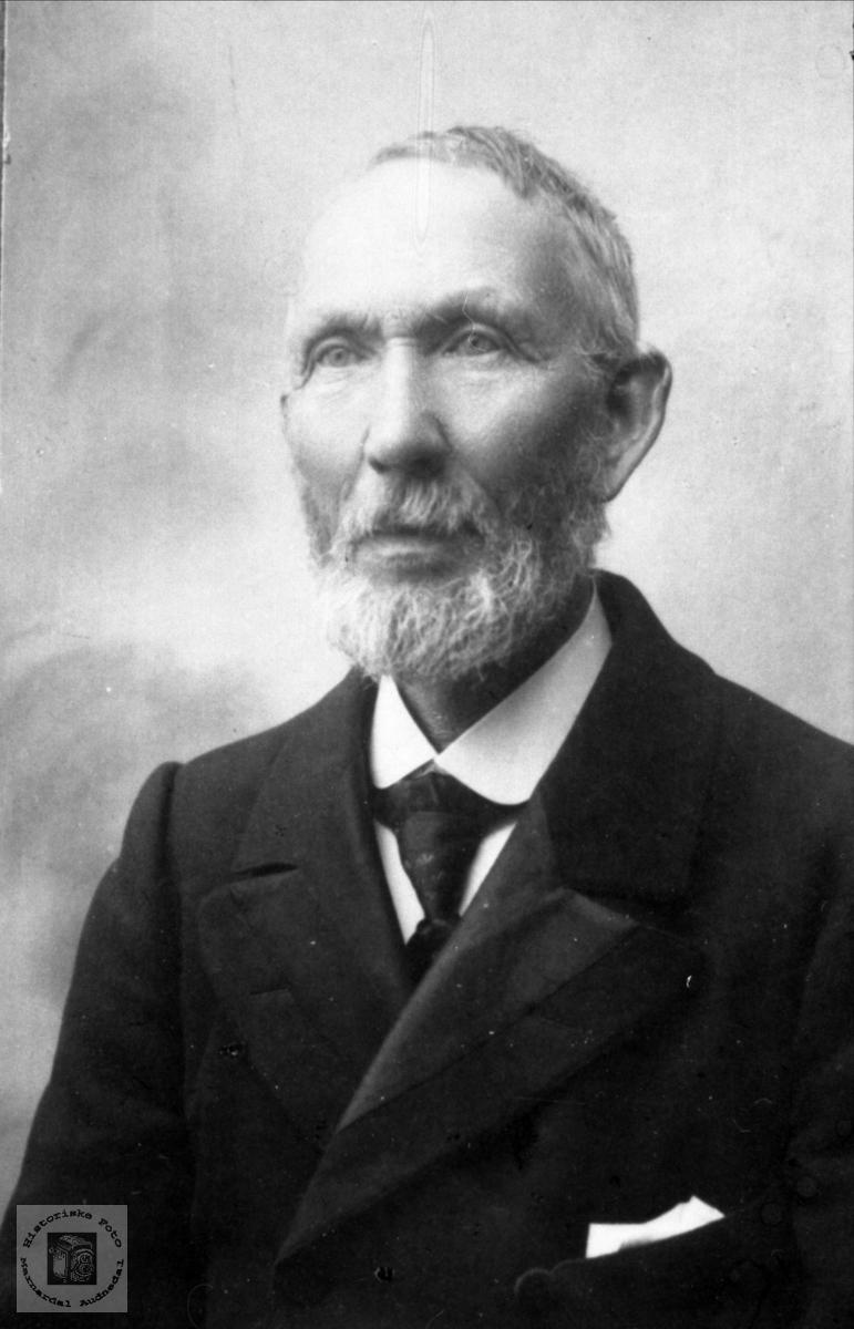 Portrett av Anders Sigvaldsen, Øyslebø.