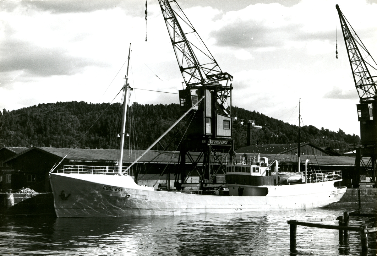 M/S Cool Boy (Ex. Sibaldi, Hvalfanger-D/S Neb II, Pequena)(b.1912, Framnæs mek. Verksted, Sandefjord)