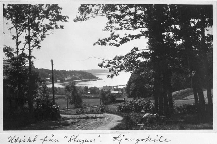 """Text på kortet: """"Utsikt från """"Stugan"""", Ljungskile""""."""