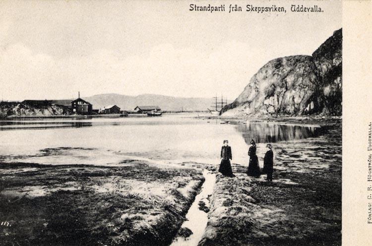 """Tryckt på kortet: """"Strandparti från Skeppsviken, Uddevalla."""""""