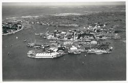 Marstrand. Koön