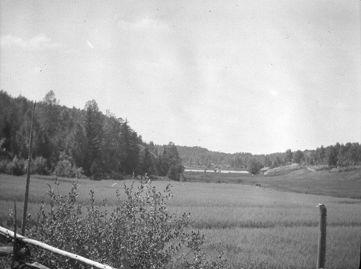 """Enligt text som medföljde bilden: """"Naverstad"""". ::"""