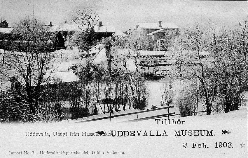 """Tryckt text på vykortets framsida: """"Uddevalla Utsigt från Hasselbacken""""."""