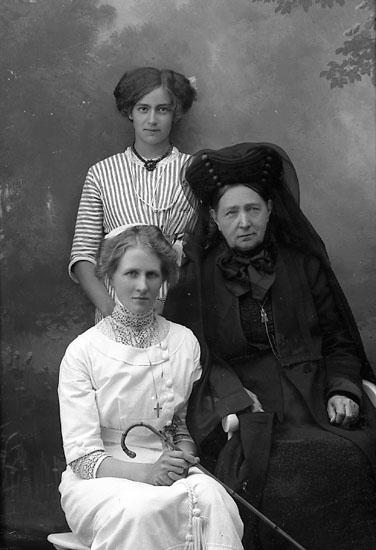 """Enligt fotografens journal Lyckorna 1909-1918: """"Johansson, Fru Lyckorna""""."""