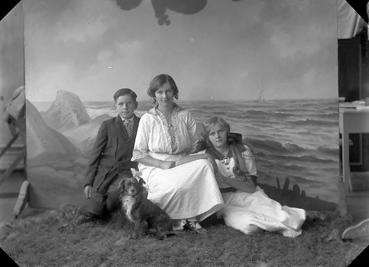 "Enligt fotografens journal nr 2 1909-1915: ""Almgren, Gunhild Byn Ödsmål""."