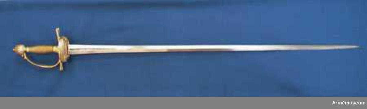 """Grupp D II.  Klingans bredd upptill är 30 mm. Parerstångens längd är 145  mm. Klingan är tveeggad med flata åsar samt har på ömse sidor en blodrand, vid vars slut klingan prydes av ett ornament. Fästet är ett """"franskt fäste"""" av ursprungligen förgylld mässing. Knappen är oval, upp- och nedtill tillplattad och på sidorna prydd med räfflor. Nitknappen är låg, runt sidorna krusad, nedåt instrypt och försedd med en stor, rund fot. Halsen är instrypt och kring sin nedre kant krusad. En rand eller snarare avsats markerar gränsen mellan knappen och nitknappen samt mellan knappen och halsen, och en sådan går även runt halsens nedre del. Kaveln är spolformig med ovalt tvärsnitt och lindad med tre mässingstrådar, av vilka en är slät, men de båda andra  är sammansnodda av två parter; den ena tråden är höger-, den  andra vänstersnodd. Upp- och nedtill omges kaveln av ett omkring 8 mm brett, med tre ränder prytt band av förgyllt  mässingsbleck. Parerstången har närmast sexkantigt tvärsnitt, blir tjockare mot ändarna och pryds där, i likhet med handbygelns mitt, av sex räfflor. Parerplåten är på mitten prydd med ciselerade ornament, men är i övrigt fint prickig samt genombruten av runda hål."""