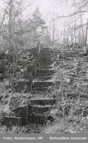 """Bohusläns samhälls- och näringsliv. 2. STENINDUSTRIN. Film: 8  Text som medföljde bilden: """"Trappa i huggen granit vid Käringhultets storbrott. April -77."""""""