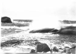 """Uppgift enligt fotografen: """"Lysekil. Sjön bryter."""""""