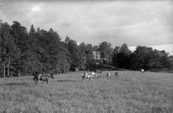 """Text till bilden: """"Vy över Gräskärs skyddshem. Den 18/6 1922"""
