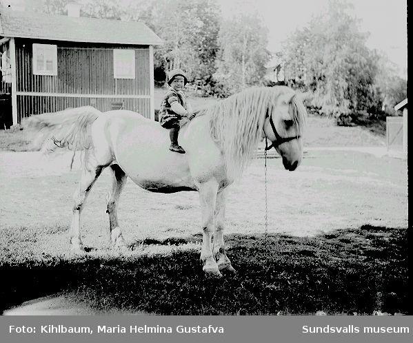 Ett barn sitter på en häst på gårdsplanen.