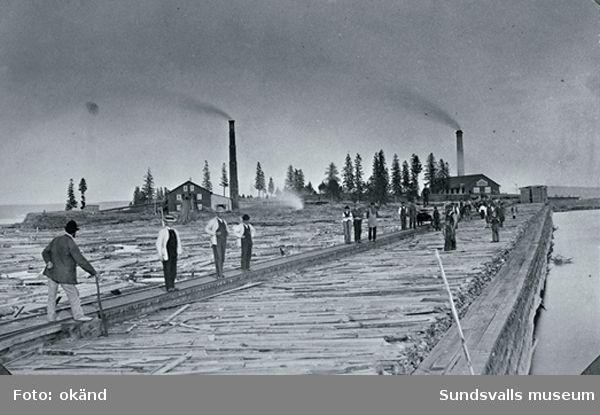 Vivstavarv - sågverken på stora Bölesholmen