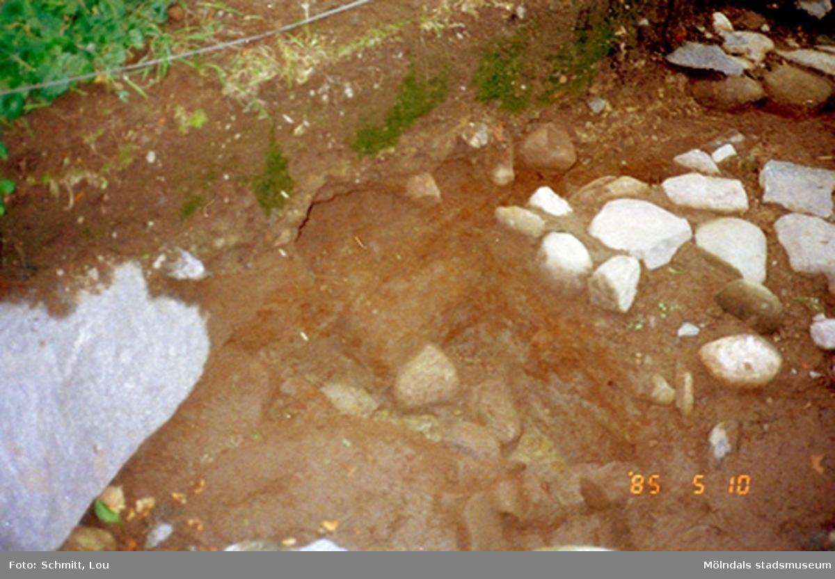 """Köksträdgård """"A"""".Fotodokumentation av utgrävning vid Gunnebo slott 1995."""