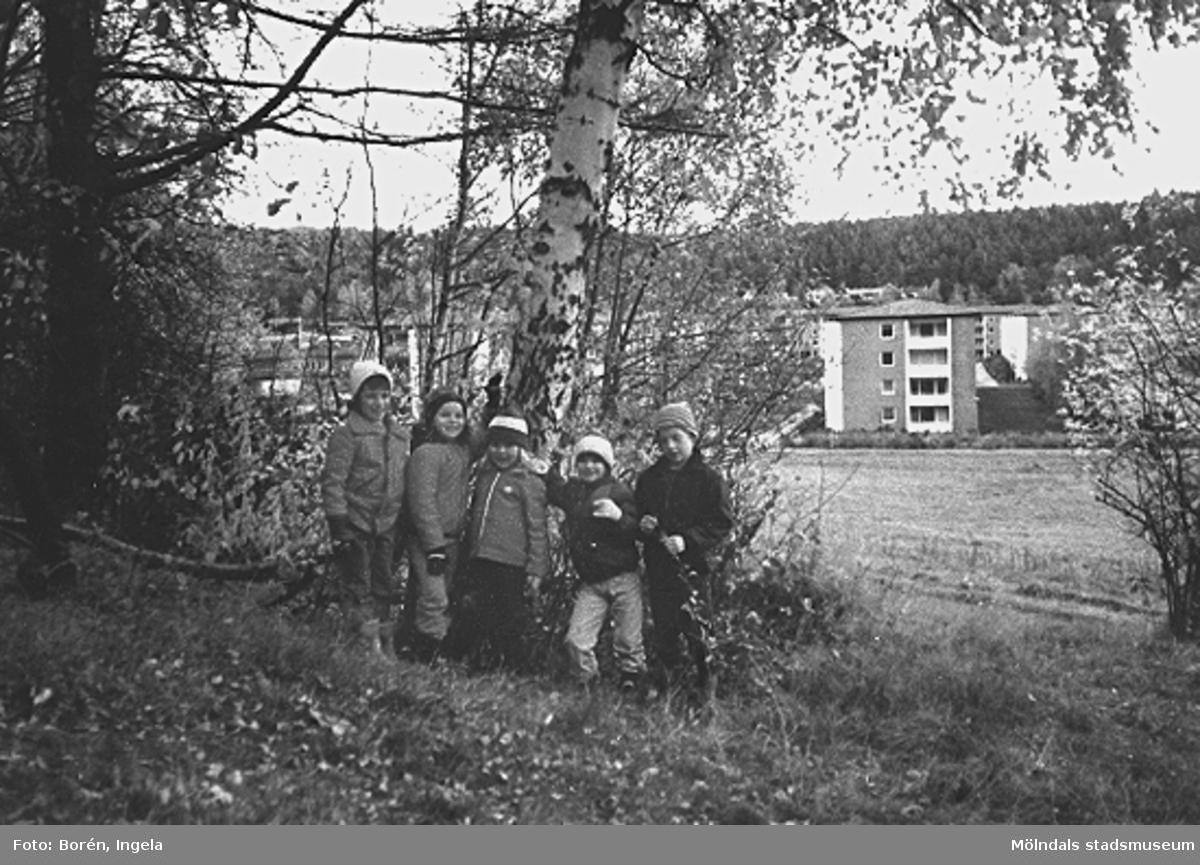 """Västerbergets sluttning där förskoleavdelningen Kornaxet hade tema """"Trädet"""" där man tittade på vad som hände med och runt trädet (Björken) under olika årstider (se även: 1997_3698-3699). I bakgrunden ses Kvarteret Rullharven. Från vänster står Pia Krakowski, Jenny Löfström, Johanna Möller, ? och Rasmus Borgwall."""