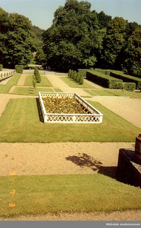 Inhägnad rabatt i Gunnebo slottspark, juli 1991.