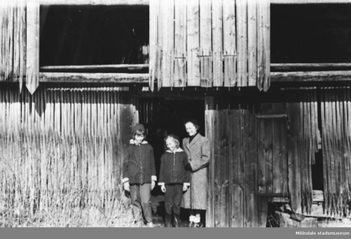 Våren 1956, systrarna Eva och Karin Pettersson tillsammans med deras mamma Rosa Pettersson.De står utanför Stretereds gamla torvlada. Ladan låg vid stranden av Tulebosjön. Torvladan var belägen vid vägen från Sporred mot TuleboÄng och Hökekärr och på Stretereds utmarker. Ladan var byggd av vertikalt glest stående hässjstörar för att torven skulle luftas och torka. Byggnadsstilen var lik den på Stretered rådande med utkragad övre byggnad. Torven var avsedd som bränsle. (Det var Melins isbinge som låg vid Tulebosjöns strand och där användes sågspån som isolering.)Enl. uppgiftslämnaren Sune Ivarson. Karin Hansson f Pettersson är givare.