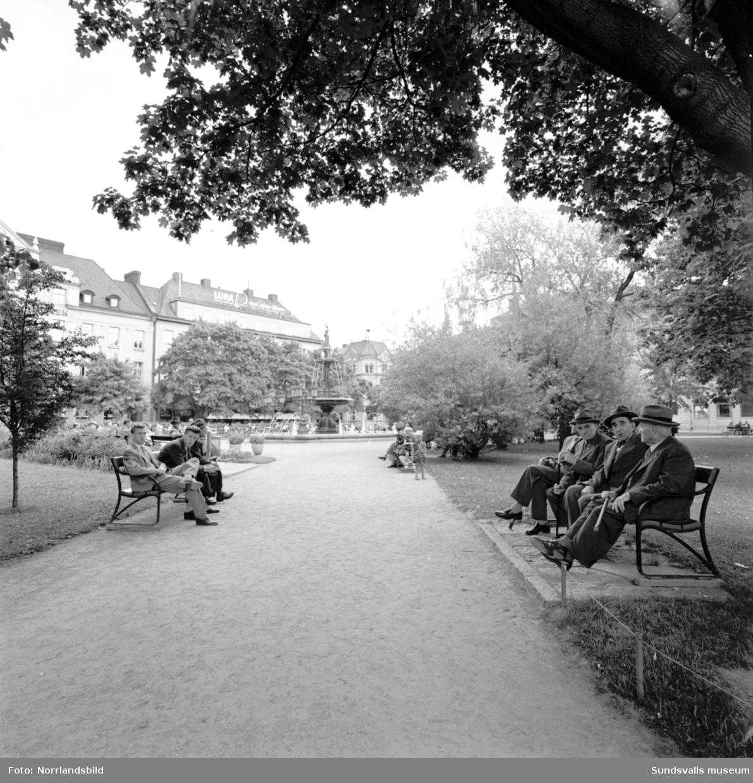 Vängåvan är en oas för stadsborna i sommarhettan.