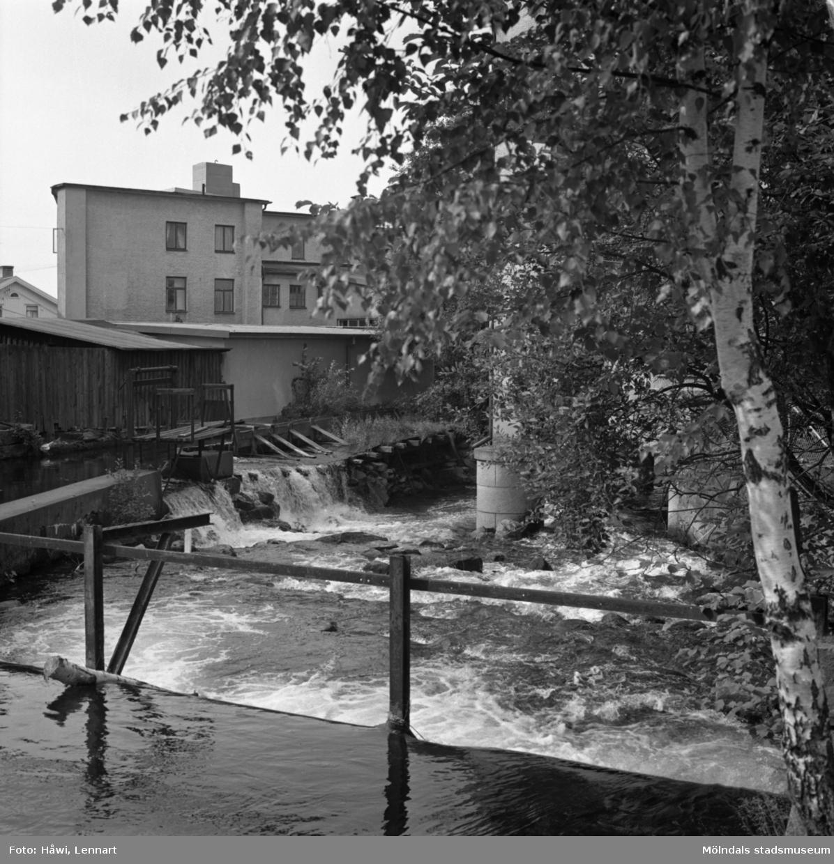 Mölndalsån i Mölndal, 8/9 1970.