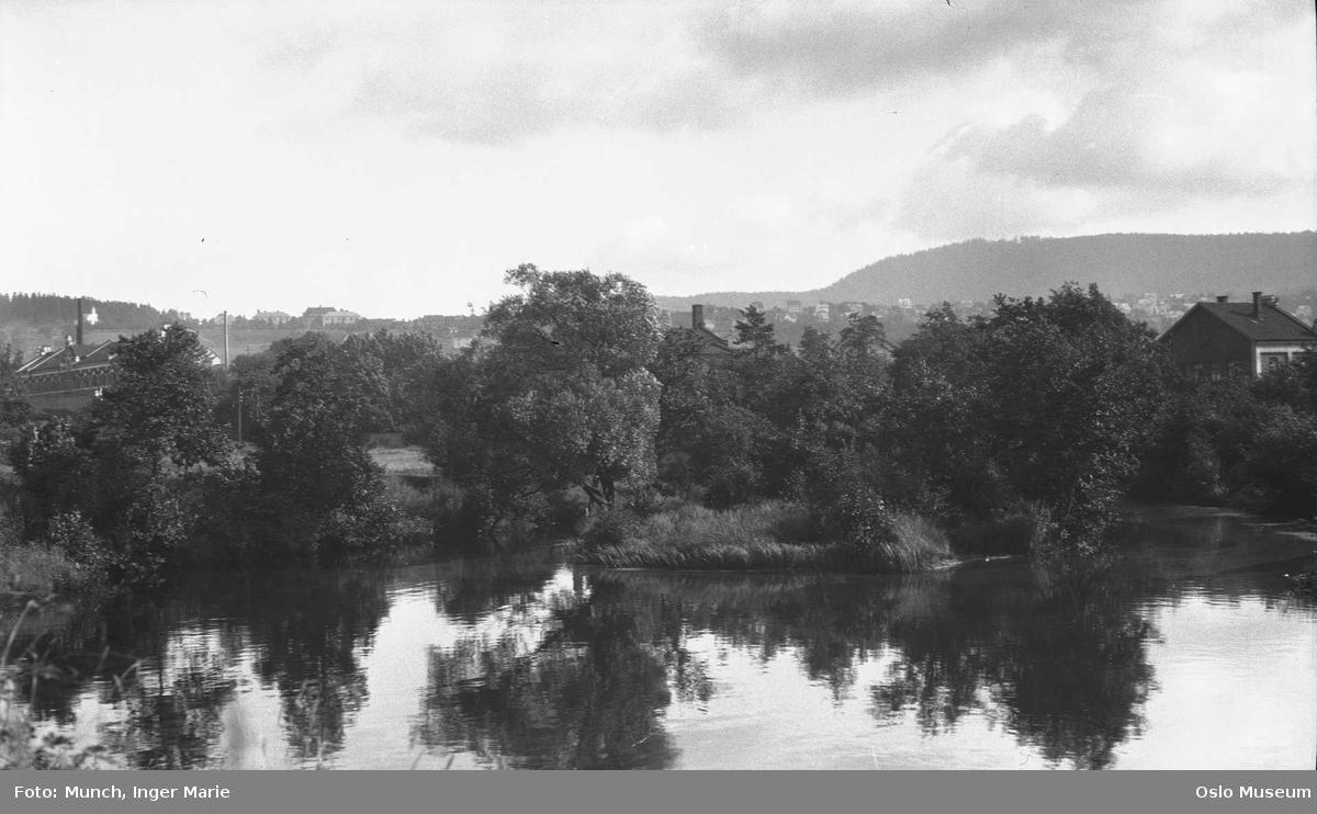 elv, dam, kulturlandskap, skog, bebyggelse