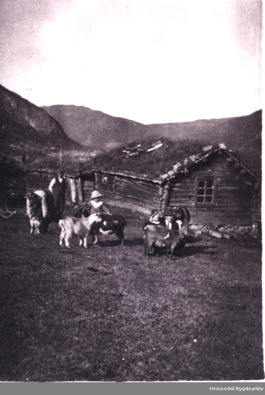 Stølen til Søre Viljugrein, 80.4, i 1918. Frå venstre: Oline, Andres, Guro og Trond Viljugrein Ukjent mann til høgre.
