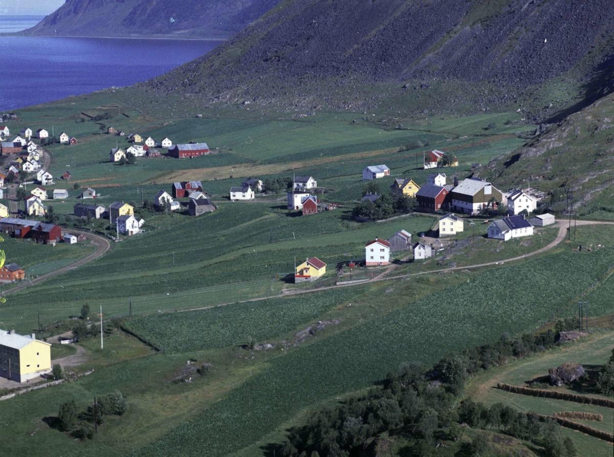 Flyfoto fra Kasfjord.