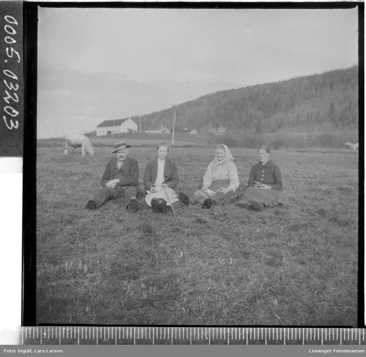 Gruppebilde av tre kvinner og en mann som sitter i en eng.