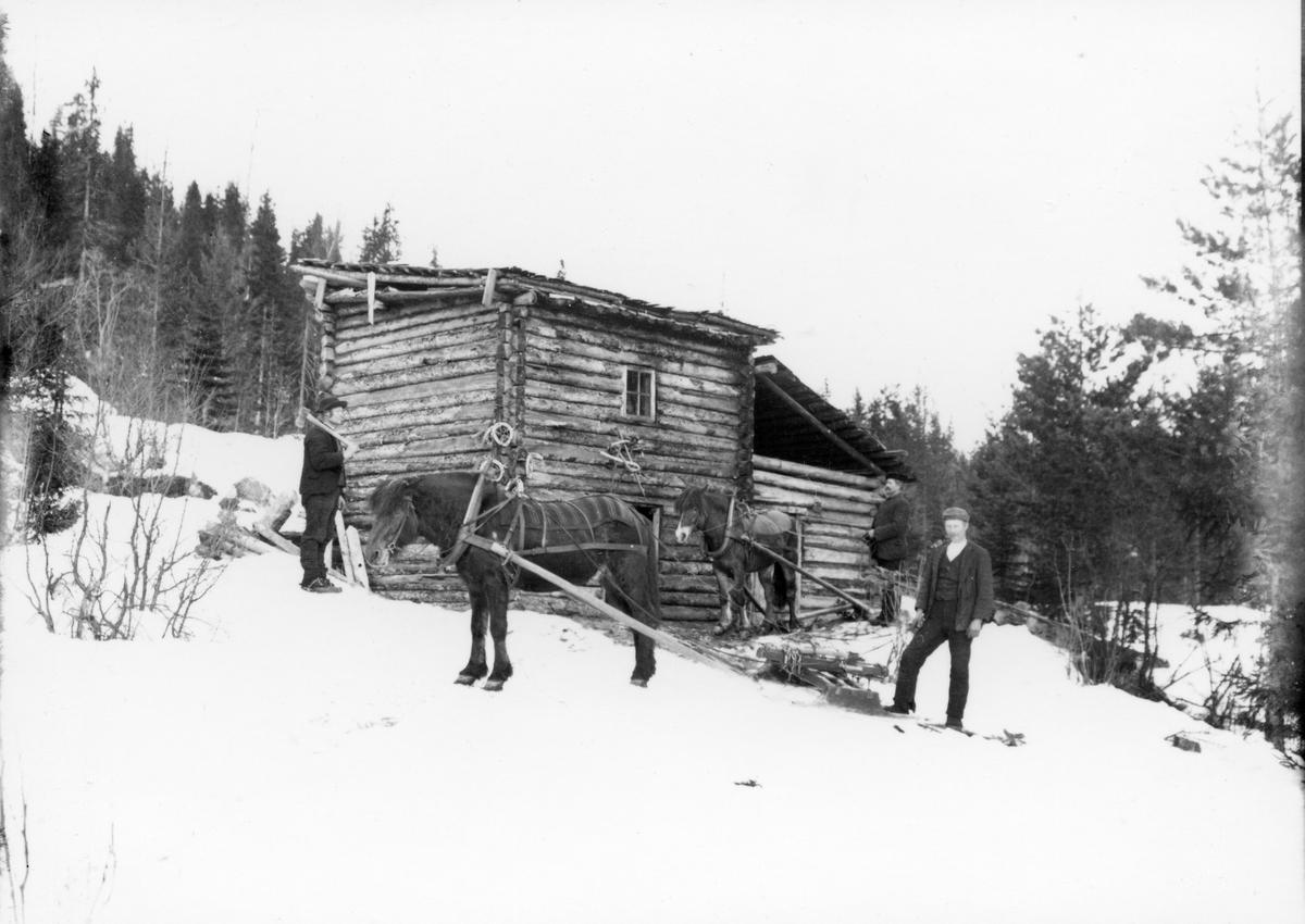 Gamle Russland hytte i Fyresdal