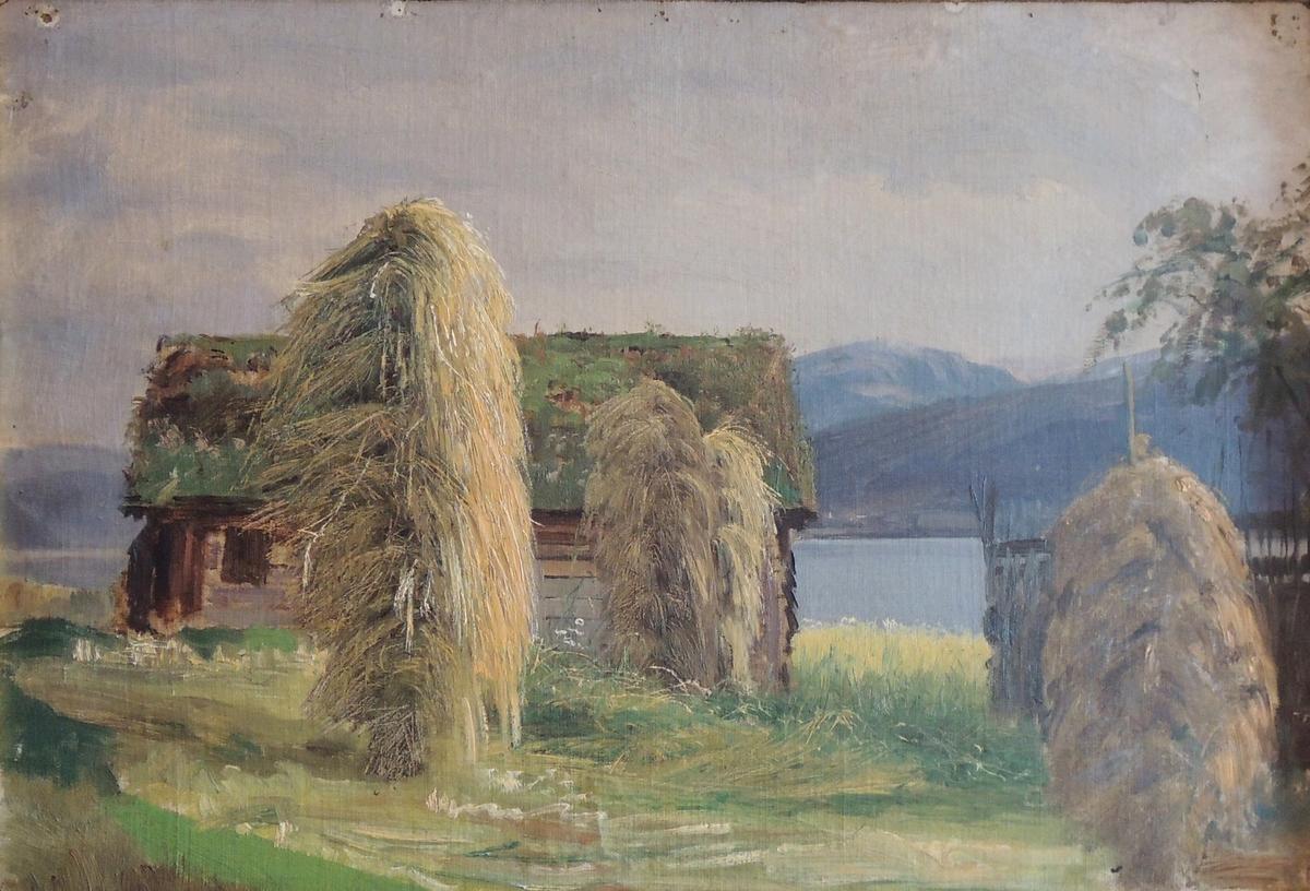 Høysåter, utshus, fjord og fjell.