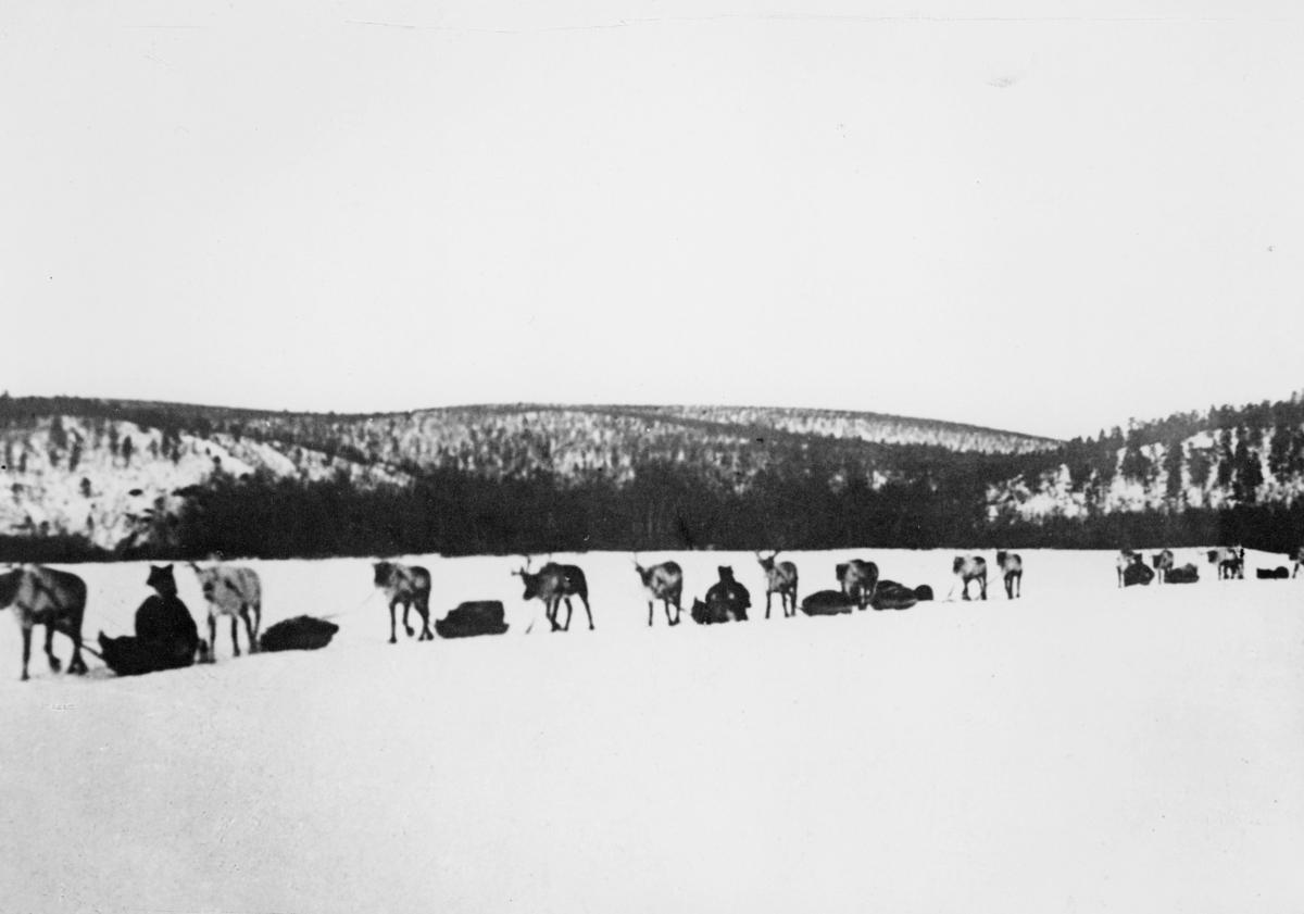 transport, Karasjokkielva i Finnmark, postbefordring med rein
