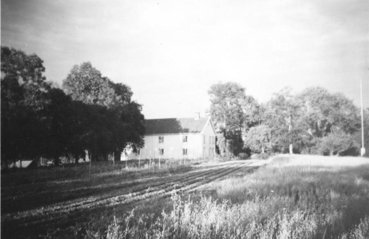 Gården Østby i bakgrunden.