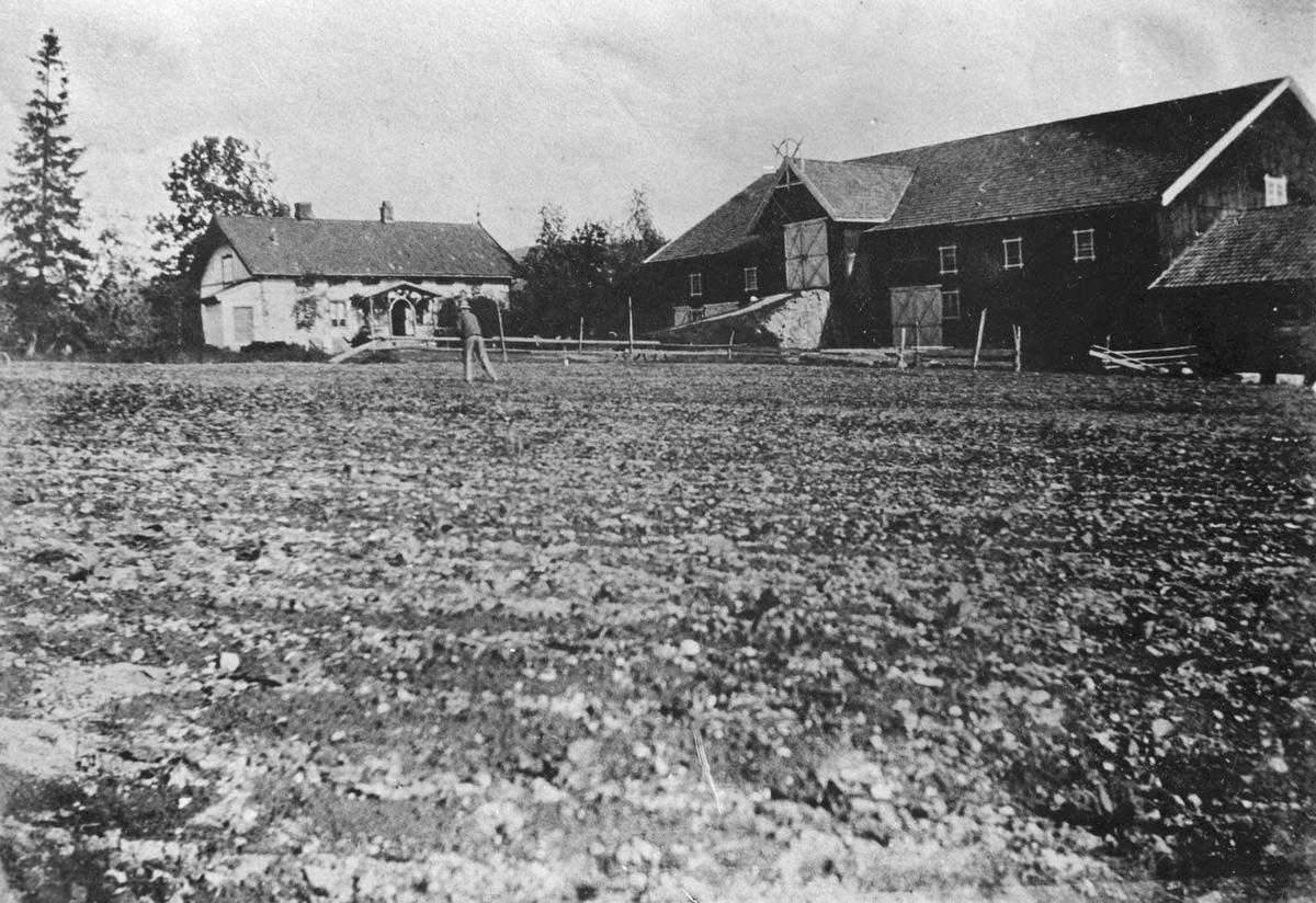 Bårli gård med hovedhus og låvebygning