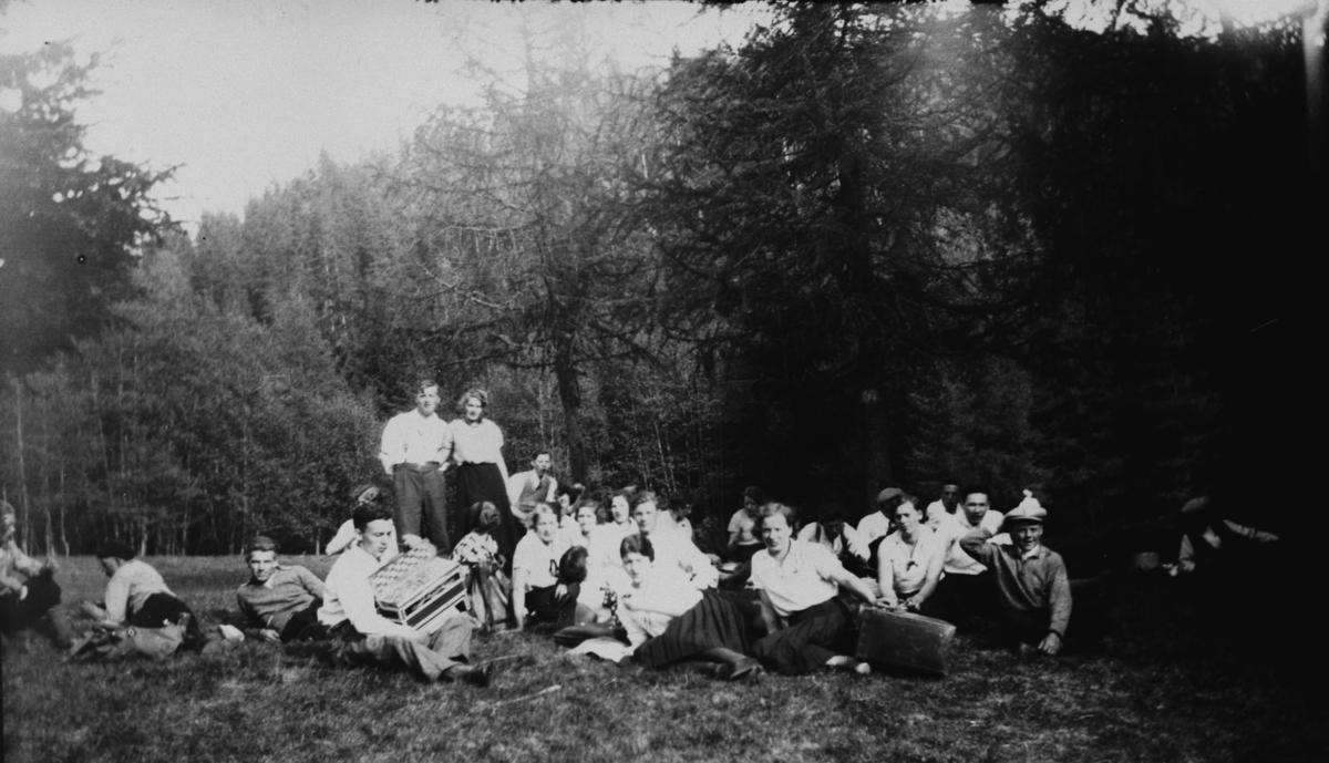 Gruppe personer, trekkspill, gressvoll, skogbrynet