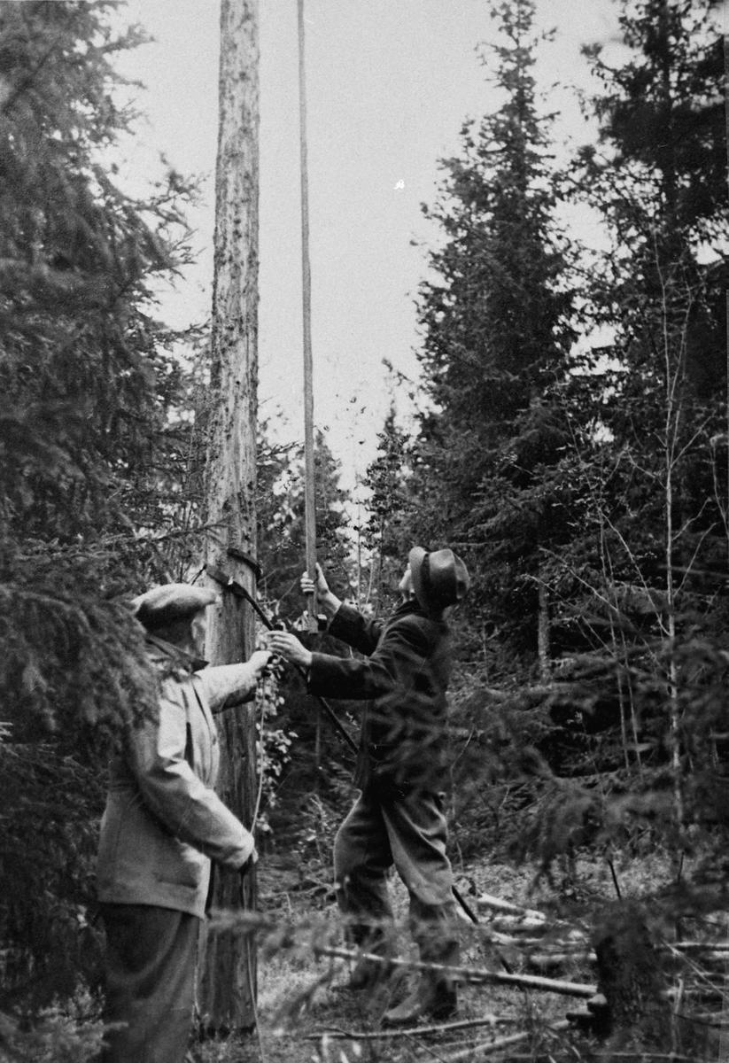 Fylkesmann Nordanger til venstre, Røen til høyre. Får strøm til radioen fra ledningene over.