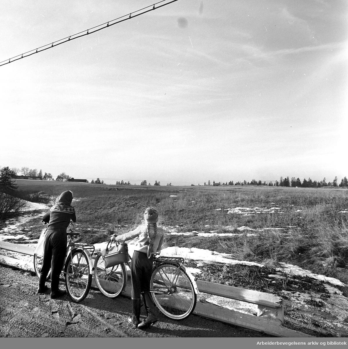 Eiendommen på Tveita skal bli boligområde,.mars 1961.