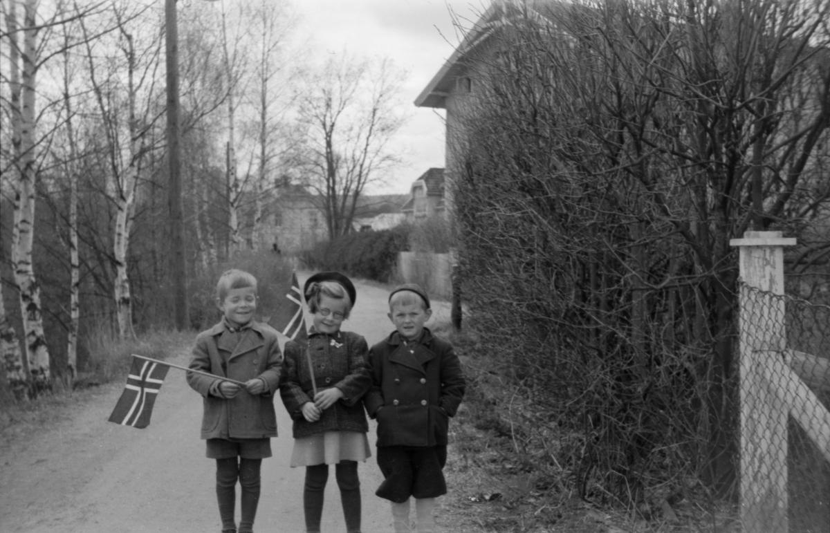 Tre barn med flagg