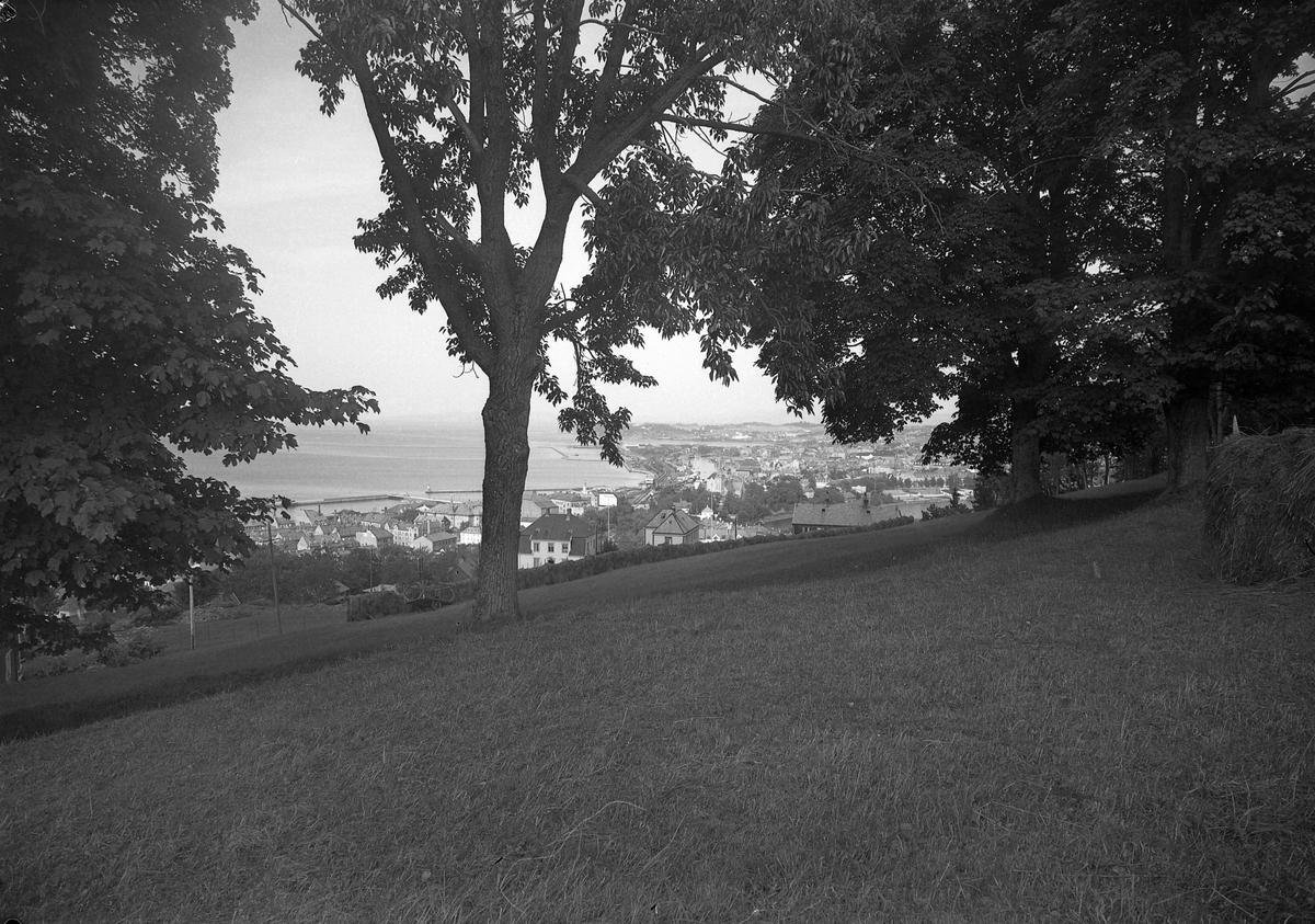 Utsikt fra Steinberget mot Ila og byen