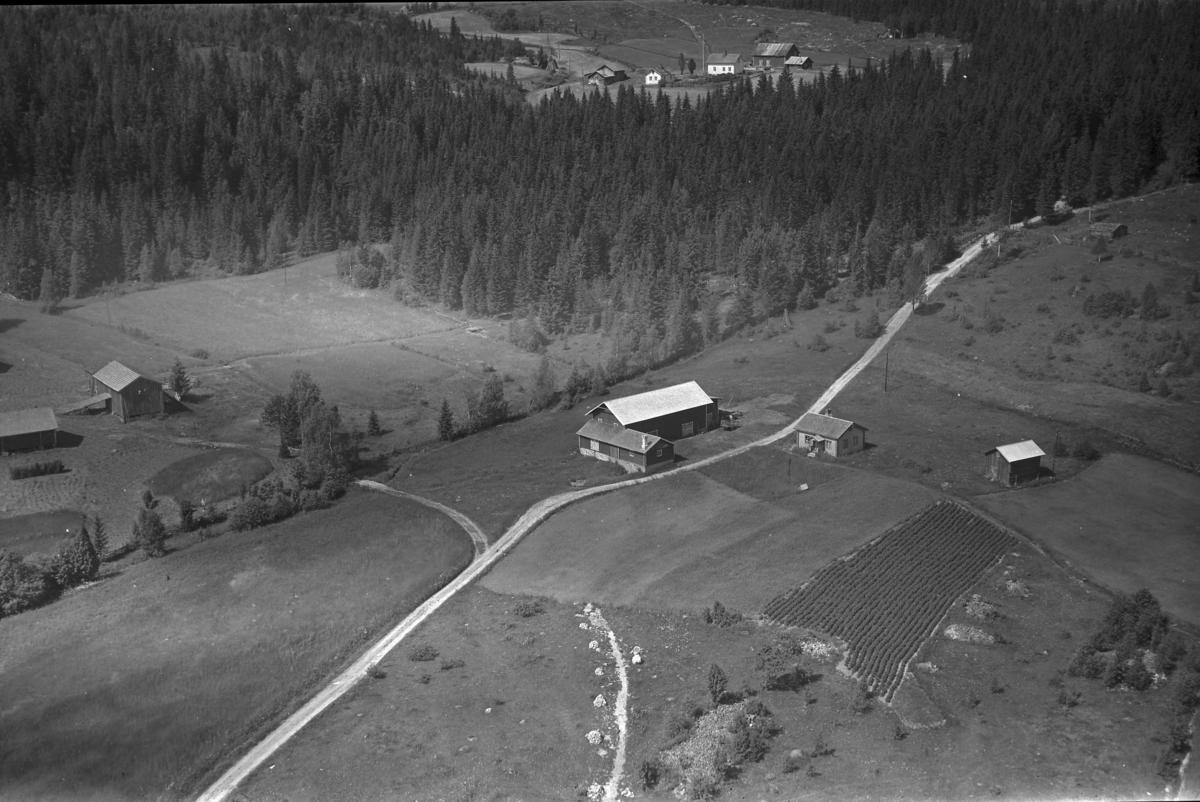 Storrismyr (Gnr 127/3) i Nordskogbygda. I venstre bildekant Rismyr (Gnr 127/1). I bakgrunnen Rismyrbakken (Gnr 127/2).