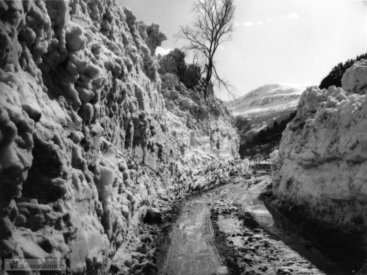 Kveldsbeitefonna gikk meget stor 28.april.1956. Bildet ble tatt dagen etter..Fonna gikk foresten 4 ganger vinteren 1955-1956. Siste gang altså 29.4 lå den ca 7 meter over veien..Den lå langt ut på sommeren, 1 juli lå det enda igjen snø.