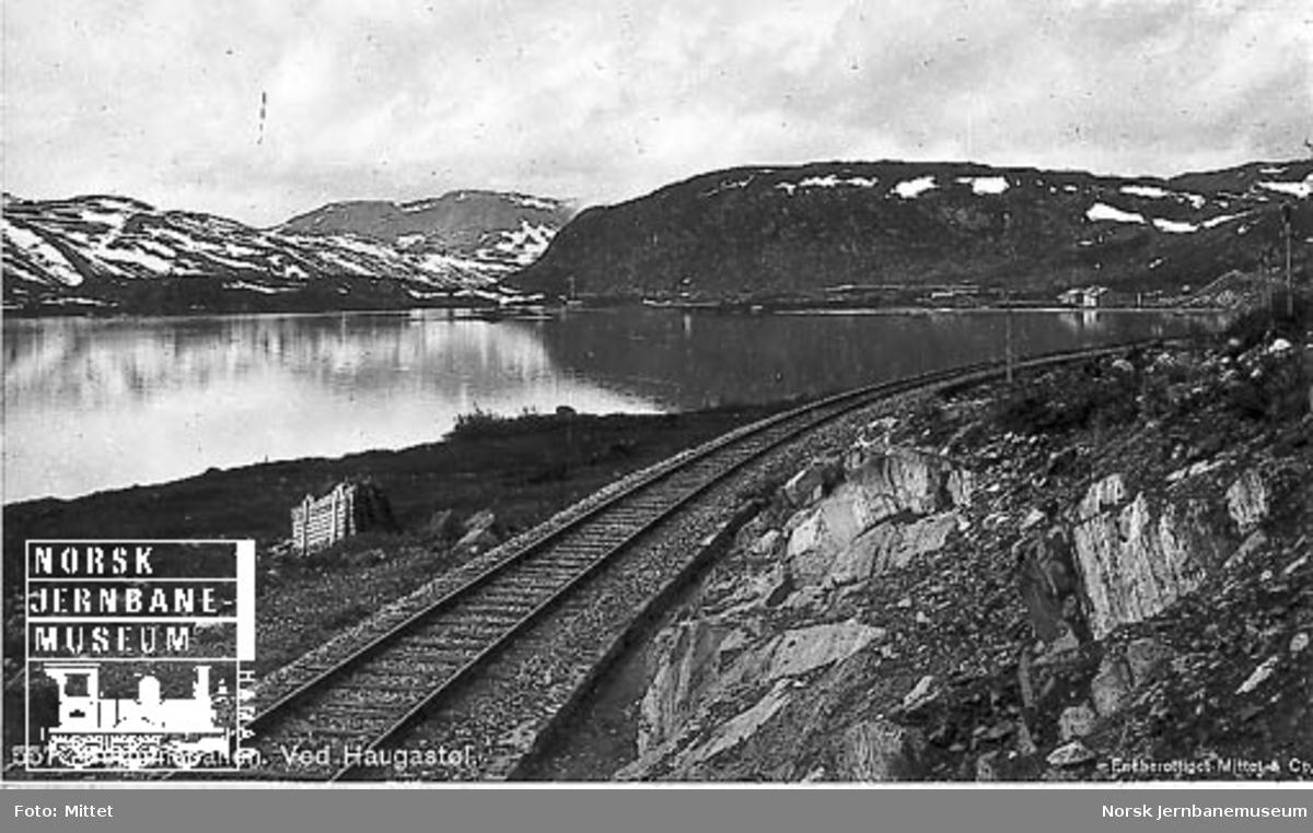 Parti fra Bergensbanen ved Haugastøl