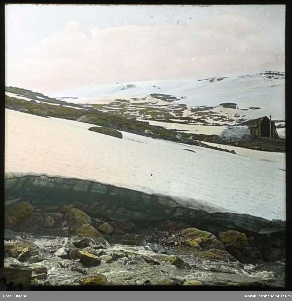 Parti fra Bergensbanen, trolig ved vestre ende av Sandåbygget med Bukkeskinnsbotn i bakgrunnen