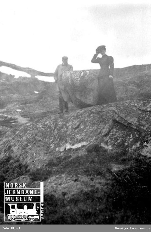 Familien Esmark på Haugastøl