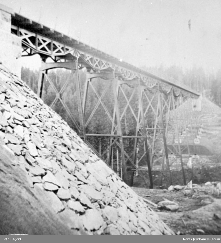 Lysedal viadukt, fotografert nedenfra