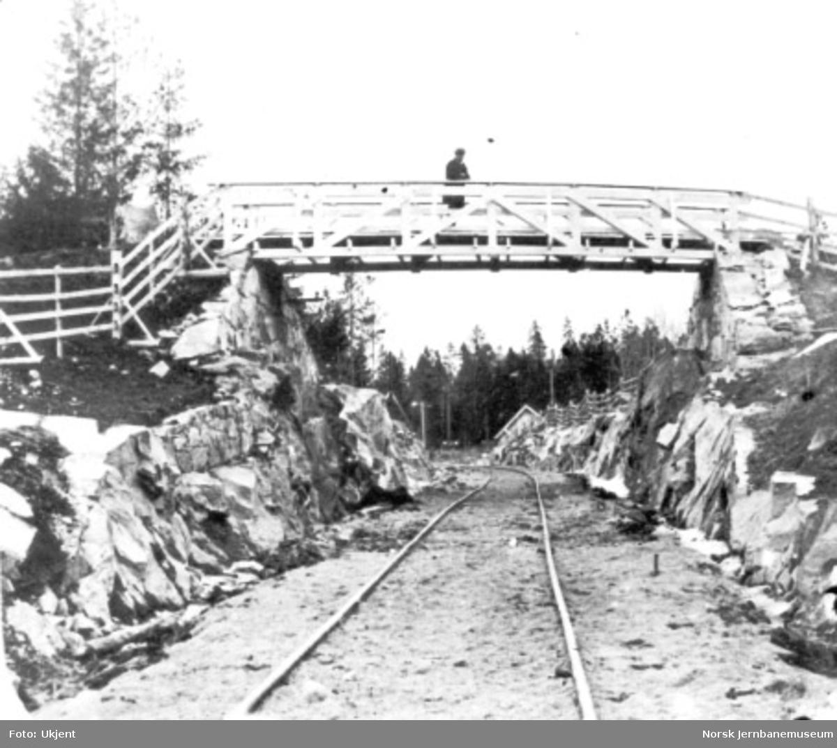 Vegovergang ved Seterstøa; en mann på brua