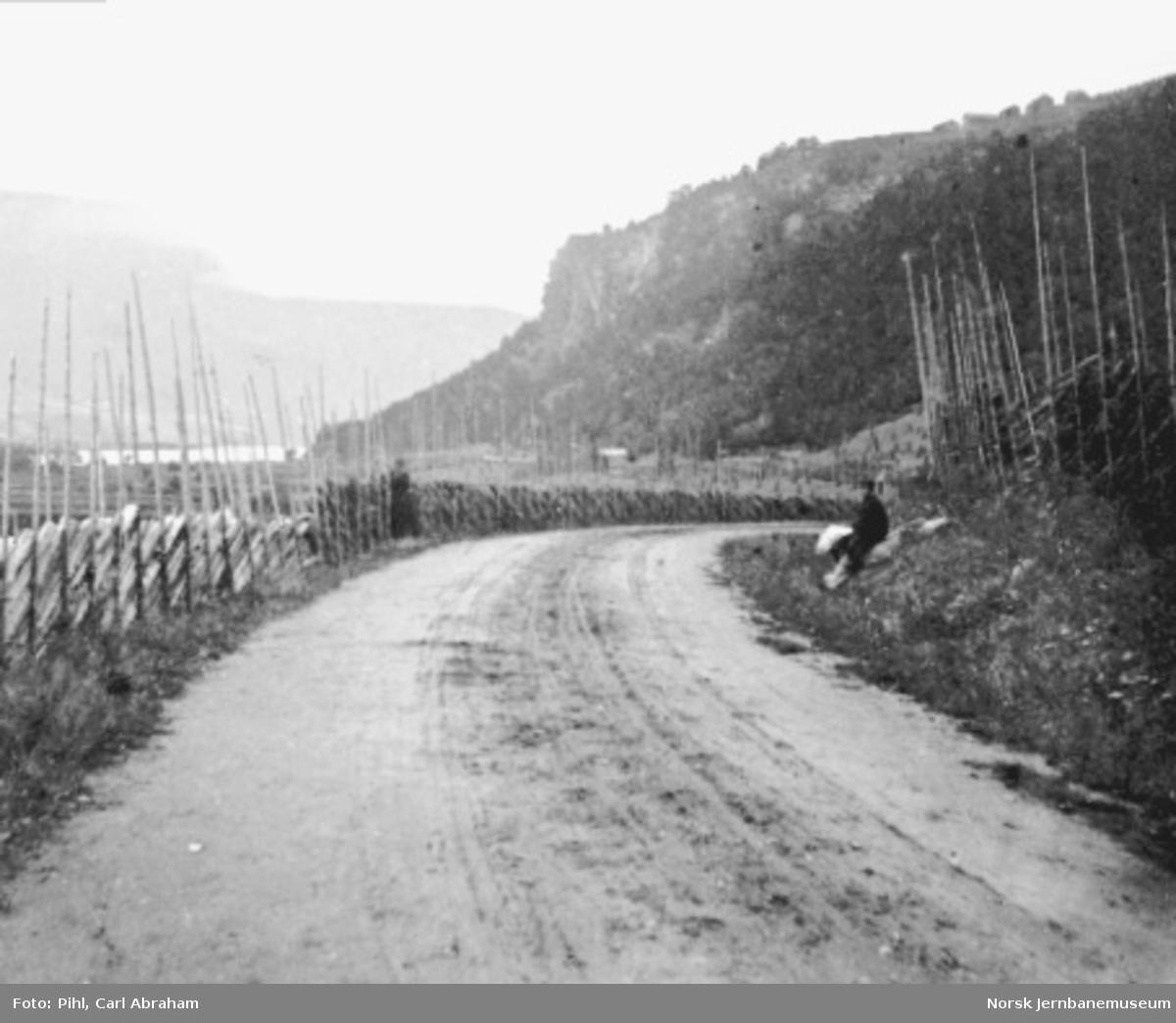 Landevegen ved Forr i Gudbrandsdalen