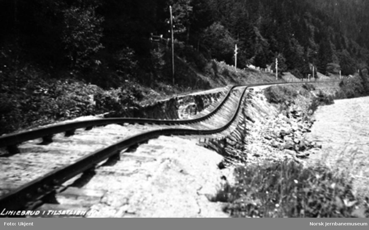 Flomskader i Gauldalen : linjebrudd i Tilsetlien 501,5