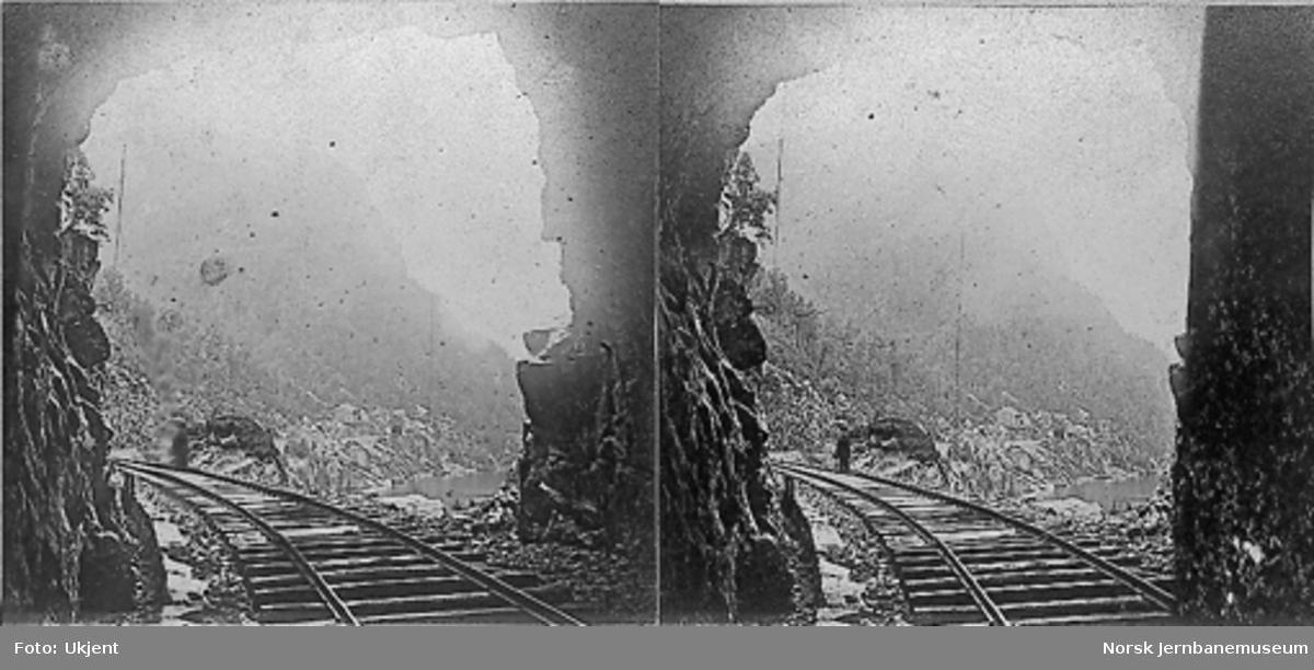 Motiv fra vestre tunnelåpning på Bakkestona tunnel, sett mot Hyvingen tunnel