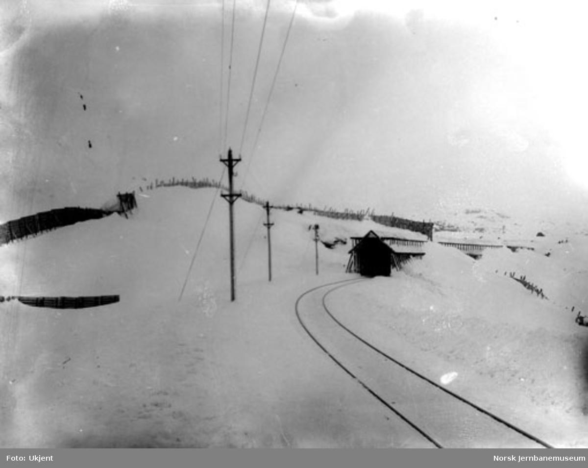 Linjeparti med snøskjermer og snøoverbygg (pel 6560), sett østover
