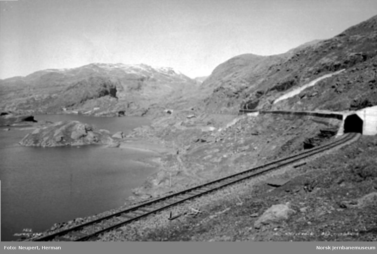 Bergensbanen ved Kleivevannet mellom Hallingskeid og Myrdal