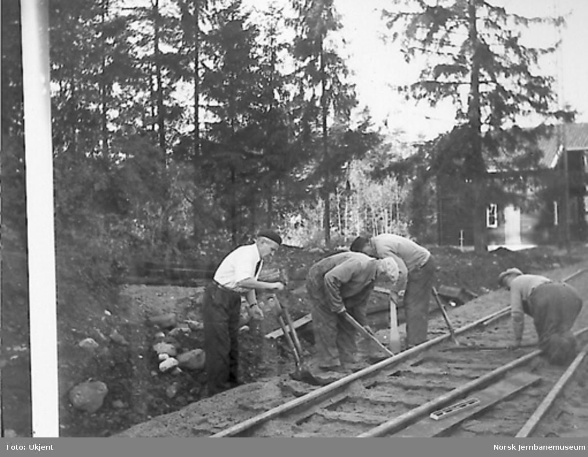 Jernbanemuseet : sporarbeid på Martodden